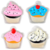 INSTANT HEAT HAND WARMER CUP CAKE COLOUR MAY VAIRY
