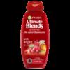 Garnier Cranberry & Argan Oil Shampoo 250ml