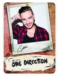 One Direction Makeup Tin Liam