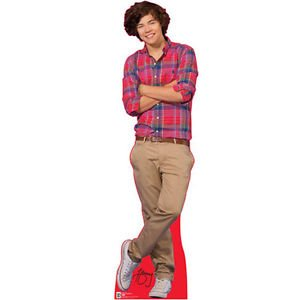 ONE DIRECTION MINI STANDEE ANY TYPE
